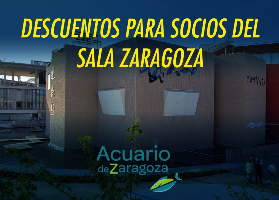 Sala Zaragoza se sumerge en el mundo del Acuario de Zaragoza